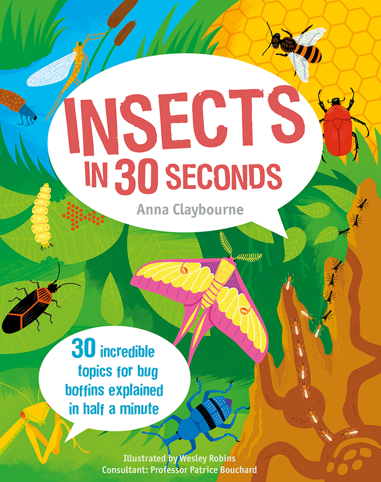 insects-in-30-seconds-1-9781782402848-976x976