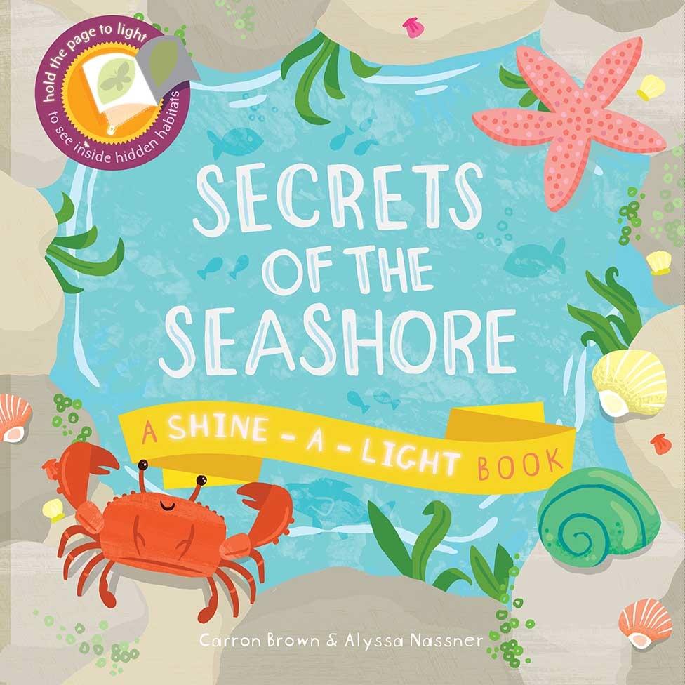 secrets-of-the-seashore-1-9781782401100-976x976