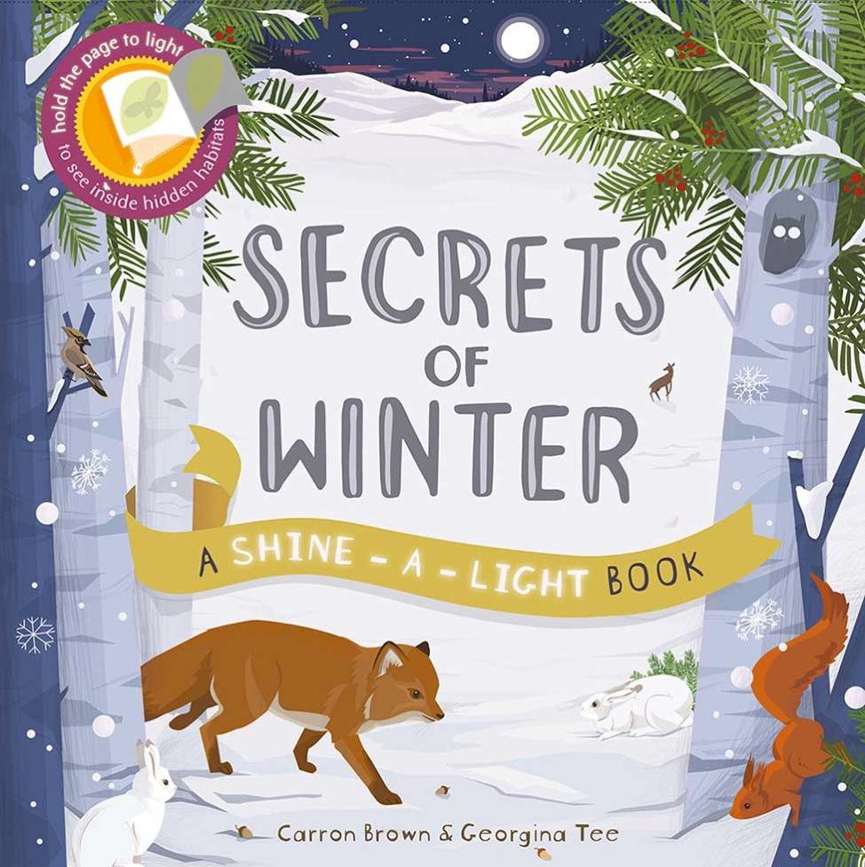 secrets-of-winter-1-9781782402770-976x976